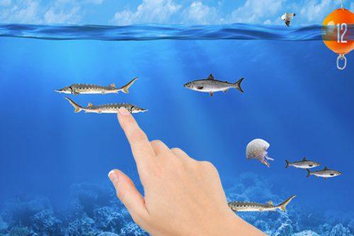 Fische fangen nach Zeit, Gamification